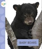 Baby Bears (Spot Baby Animals)