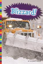 Blizzard! (Natural Disasters)