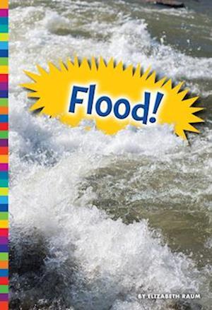 Bog, paperback Flood! af Elizabeth Raum