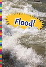 Flood! (Natural Disasters)