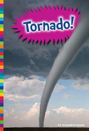 Bog, paperback Tornado! af Elizabeth Raum