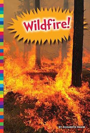 Bog, paperback Wildfire! af Elizabeth Raum