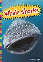 Whale Sharks (SHARKS)