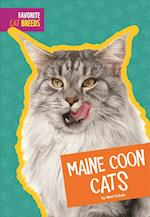 Maine Coon Cats (Favorite Cat Breeds)