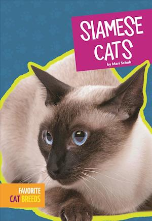 Bog, paperback Siamese Cats af Mari Schuh