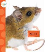 Mice (Spot Backyard Animals)