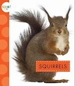 Squirrels (Spot Backyard Animals)