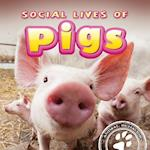 Social Lives of Pigs af Elliot Riley