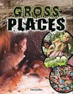 Gross Places