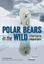 Polar Bears in the Wild