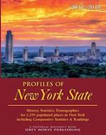 Profiles of New York 2017/18 (Profiles of New York)