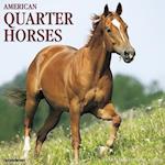 American Quarter Horses 2018 Wall Calendar