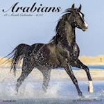Arabians 2018 Wall Calendar