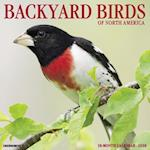 Backyard Birds 2018 Wall Calendar
