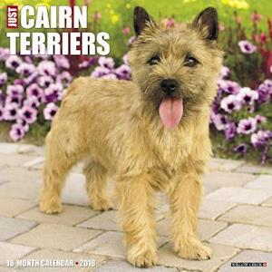 Just Cairn Terriers 2018 Calendar