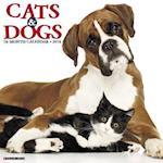 Cats & Dogs 2018 Calendar
