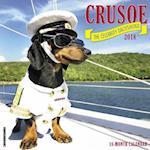 Crusoe the Celebrity Dachshund 2018 Wall Calendar (Dog Breed Calendar)