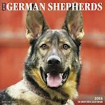 Just German Shepherds 2018 Wall Calendar (Dog Breed Calendar)