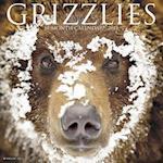 Grizzlies 2018 Calendar