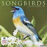 Songbirds 2018 Wall Calendar
