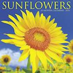 Sunflowers 2018 Calendar
