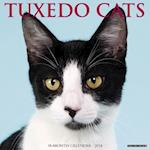 Just Tuxedo Cats 2018 Wall Calendar