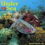 Under the Sea 2018 Wall Calendar