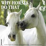 Why Horses Do That 2018 Calendar