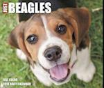 Just Beagles 2018 Box Calendar (Dog Breed Calendar)