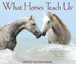 What Horses Teach Us 2018 Calendar af Willow Creek Press