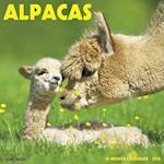 Alpacas 2018 Calendar