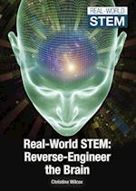 Real-World Stem (Real World Stem)