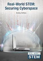 Securing Cyberspace (Real World Stem)