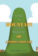 Is There a Mountain of Difference Between Us or 'Common Ground'?