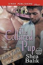 The Collared Pup [Cedar Falls 2] (Siren Publishing Classic ManLove)