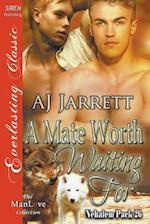 A Mate Worth Waiting for [Nehalem Pack 26] (Siren Publishing Everlasting Classic Manlove)