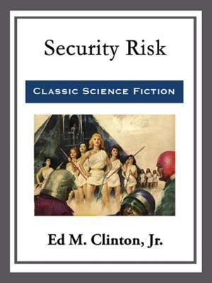Security Risk af Jr. Ed M. Clinton