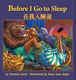 Before I Go to Sleep / Traditional Chinese Edition