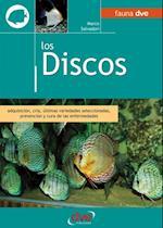 Los discos. Adquisicion, cria, ultimas variedades seleccionadas, prevencion y cura de las enfermedades af Marco Salvadori