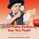 How Many Pennies Can You Find? a Counting Book