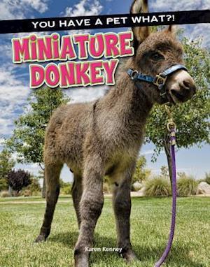 Bog, hardback Miniature Donkey af Karen Kenney
