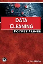Data Cleaning Pocket Primer (Pocket Primer)