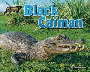 Bog, hardback Black Caiman af Ellen Lawrence