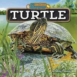 Bog, hardback Turtle af Debby Freeman