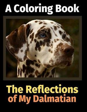 The Reflections of My Dalmatian
