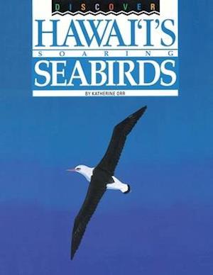Discover Hawai'i's Soaring Seabirds