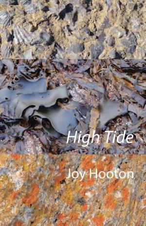 Bog, hæftet High Tide af Joy Hooton