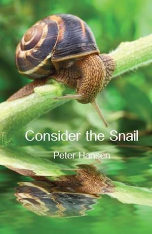 Bog hæftet Consider the Snail af Peter Hansen