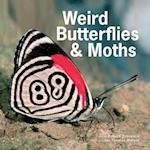 Weird Butterflies & Moths