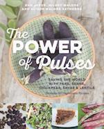 The Power of Pulses af Dan Jason